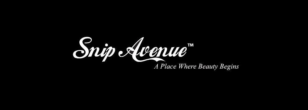 Snip Avenue Holdings Pte Ltd