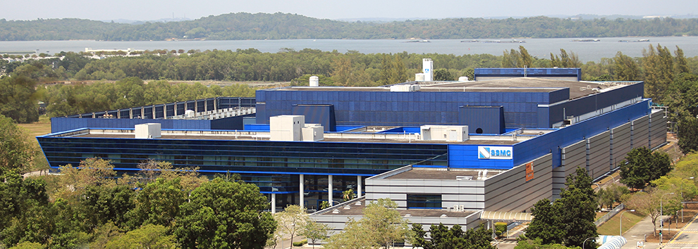 SYSTEMS ON SILICON MANUFACTURING COMPANY (SSMC)