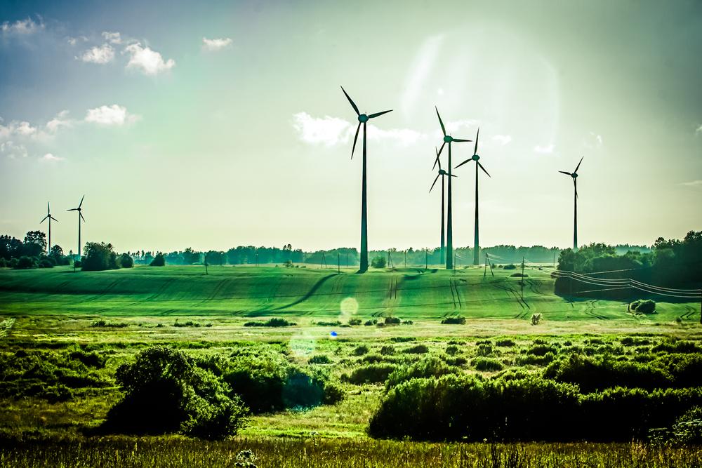 Quelles sont les créations d'emploi pour les éco-activités ?