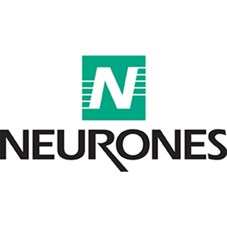 Neurones IT